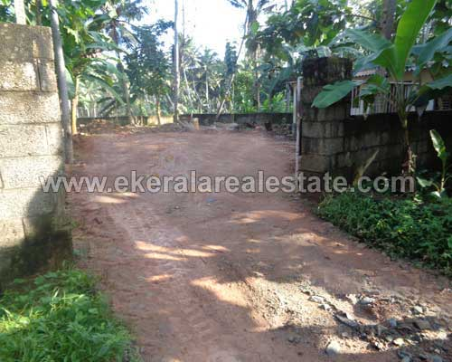 neyyattinkara thiruvananthapuram 11 cent lorry plot sale kerala real estate