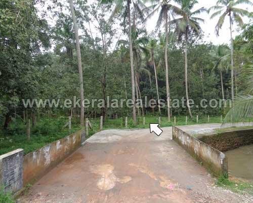 kuttichal kattakada trivandrum house plots for sale trivandrum real estate