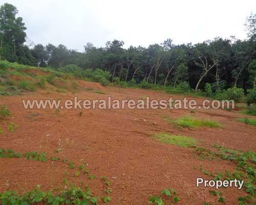 residential land plots for sale peyad trivandrum peyad kerala properties