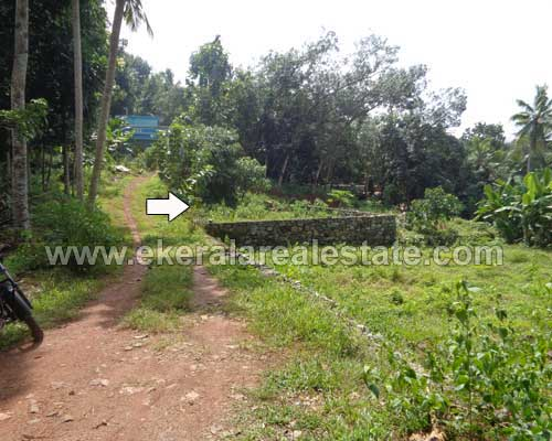 powdikonam Thiruvananthapuram 4 cent lorry plot sale kerala real estate
