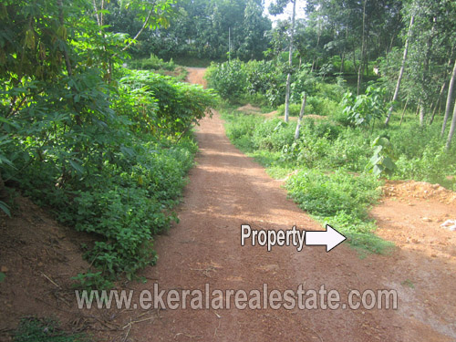 kanyakulangara Thiruvananthapuram 8 cent residential lorry plot sale kerala real estate