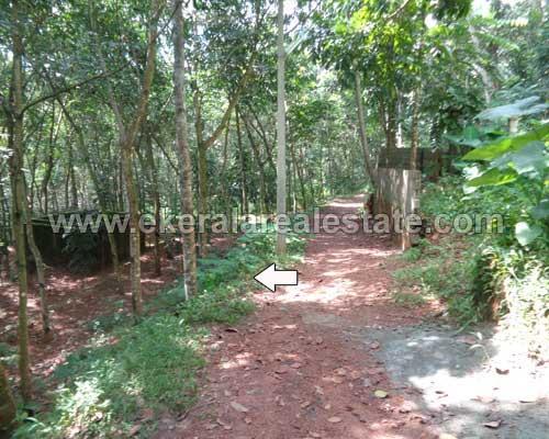 balaramapuram real estate 40 cents land for sale trivandrum