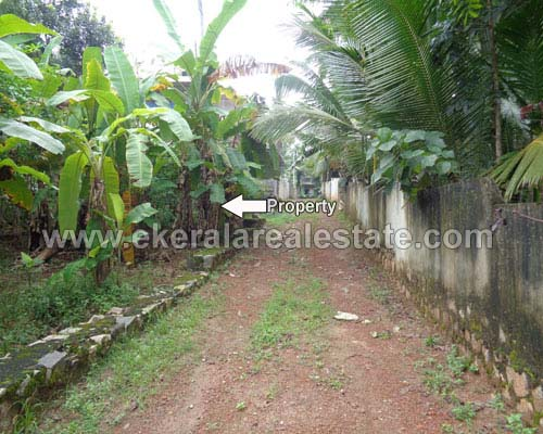 kallayam residential lorry plots sale kerala real estate