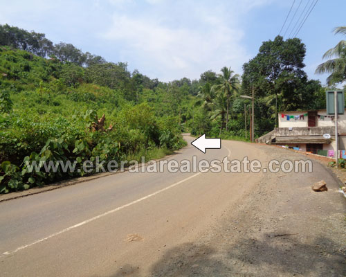 pappanamcode trivandrum road frontage 7 acres land sale kerala real estate