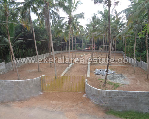 mangalapuram 6, 7 cents plots sale kerala real estate