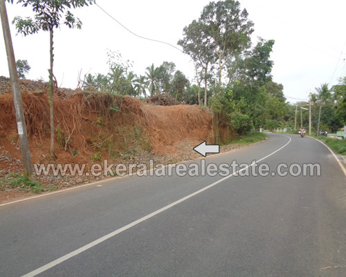 kerala real estate malayinkeezhu road frontage house plots sale malayinkeezhu