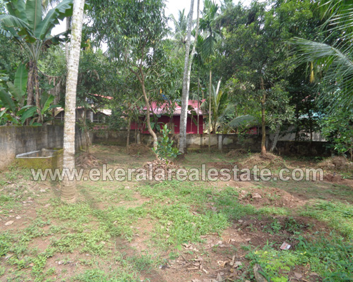 karakulam real estate properties karakulam 12 cent residential plots sale