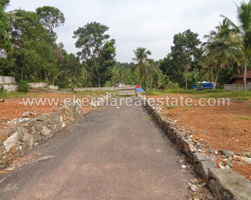 kerala real estate mannanthala 5, 6 house plots sale mannanthala keraladithyapuram