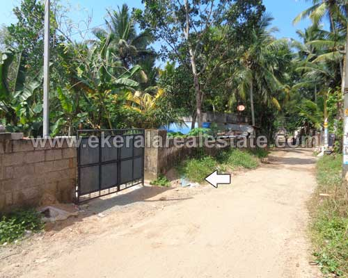 residential land plots 4.800 cents for sale in Pallichal trivandrum kerala real estate
