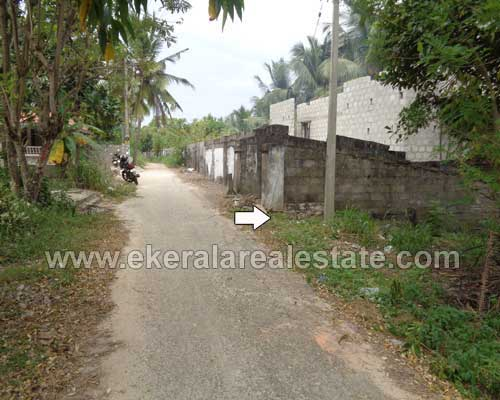residential land plots 25 cents for sale in Kazhakuttom trivandrum kerala real estate