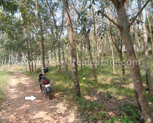 Chenkottukonam real estate residential land for sale Chenkottukonam properties