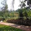Mangalapuram kerala real estate tar road residential land plot for sale Mangalapuram properties