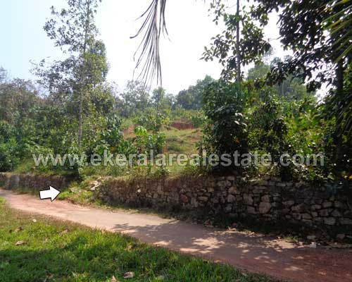 Mangalapuram kerala real estate tar road residential land plot for sale Mangalapuram properties
