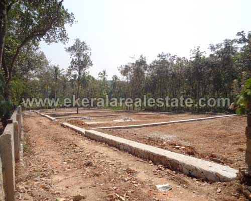 Mangalapuram kerala real estate residential Lorry plot for sale Mangalapuram properties