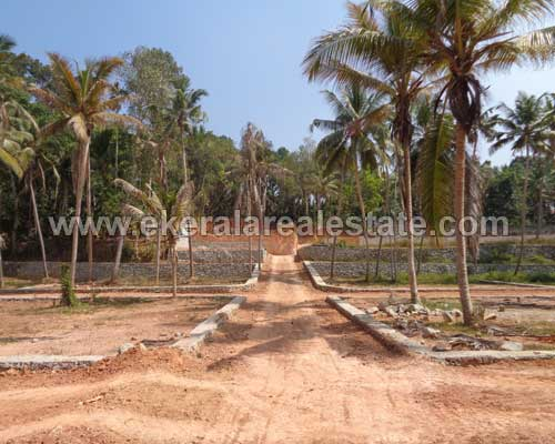 1 acre land plots sale in mannanthala trivandrum kerala real estate