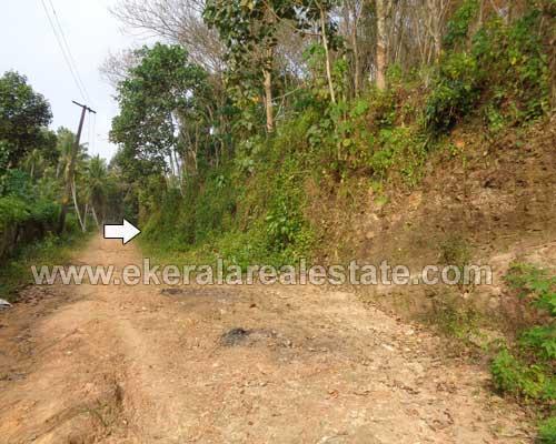 Nedumangad properties trivandrum Nedumangad Erinjayam house plots sale kerala