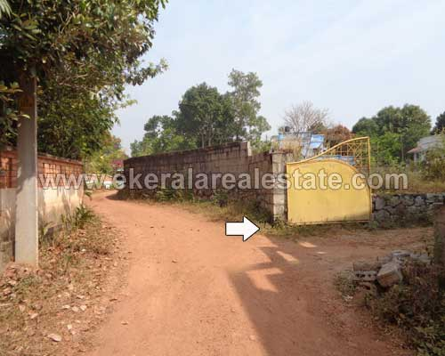kachani 8 cent residential house plots for sale kachani real estate trivandrum