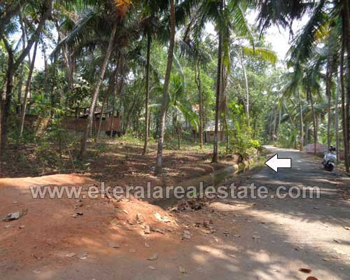 neyyattinkara residential house plots sale neyyattinkara real estate trivandrum