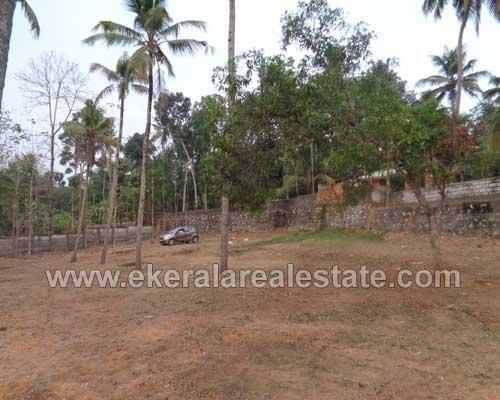 Ithikkara Adichanalloor Kollam thiruvananthapuram 54 cent Residential land for sale in kerala real estate