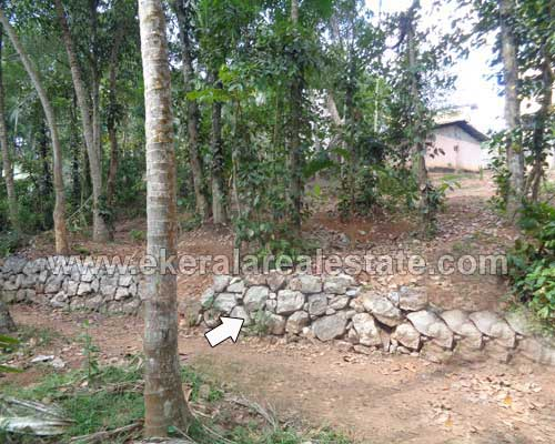 Karakulam thiruvananthapuram 9 cent Residential Plot for sale in kerala real estate