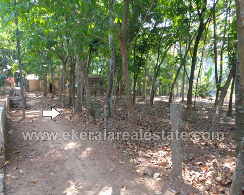 Kattakada thiruvananthapuram 15 Cents Land for sale in kerala real estate