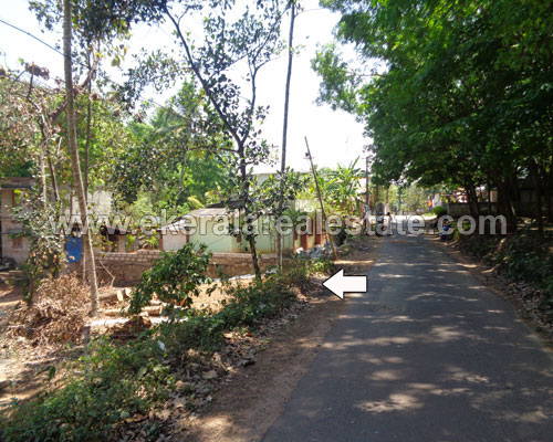 Anad Nedumangad thiruvananthapuram 60 cent land for sale in kerala real estate