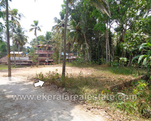 Kallayam thiruvananthapuram 6 cent Square Plot for sale in kerala real estate
