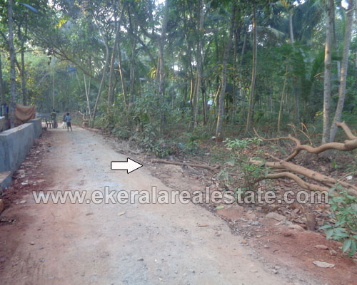 Kanjiramkulam thiruvananthapuram 20 cent lorry plot for sale in kerala real estate