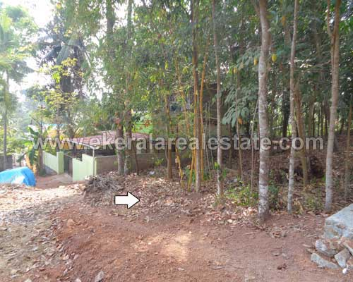 7-Cents-House-Plot-for-Sale-at-Thirumala-Trivandrum-Kerala-g-1