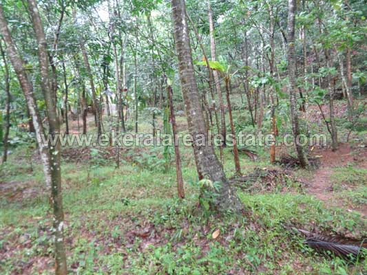 Road Frontage 75 Cents Land Ideal for Residential purpose Kattakada Kallikkad Trivandrum Kerala