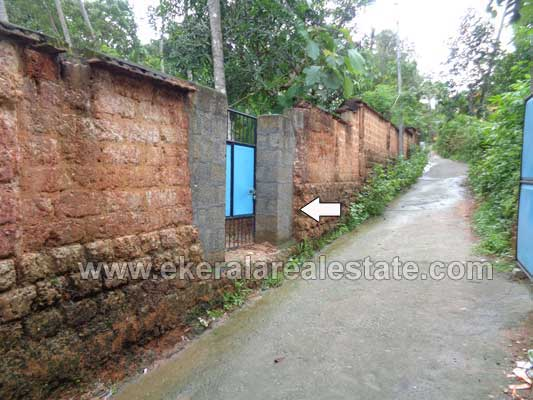39 Cents Chirayinkeezhu Real Estate Residential Land for Sale at Chirayinkeezhu Trivandrum Kerala