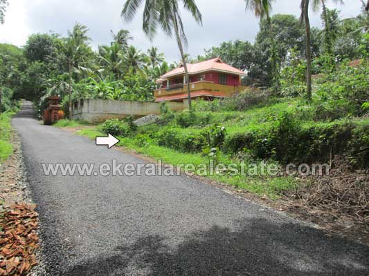 Sreekaryam real estate 14 cents land for sale at for Land for sale in kerala