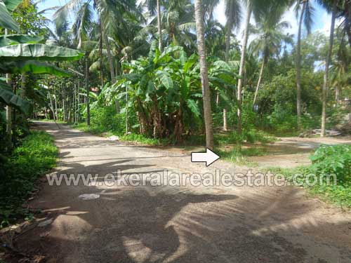 Thirumala Real estate 5 Cents House Plot for Sale at Thirumala Trivandrum Kerala Real Estate