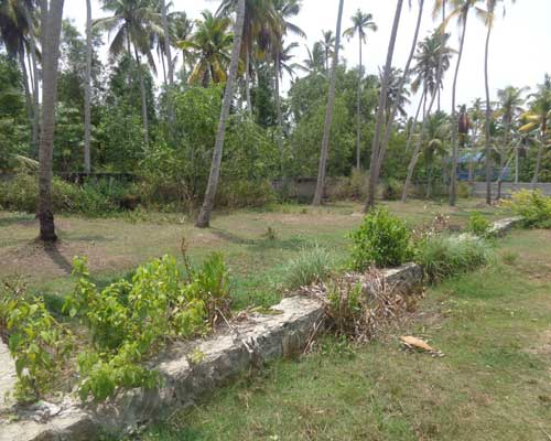 Kaniyapuram Properties Land Sale at Kaniyapuram 20 cents Land for sale at Kaniyapuram Trivandrum Kerala