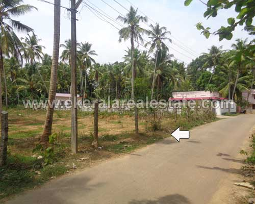 Land Sale near Pappanamcode Trivandrum Properties House Plot at Pappanamcode