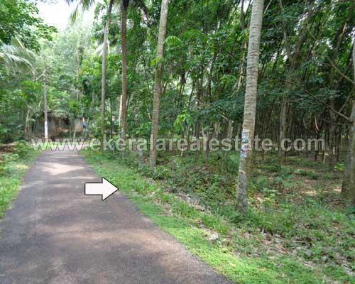Properties in Kattakada Rubber Plantation in Kattakada Trivandrum Kerala