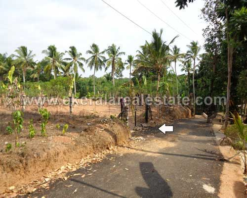 Near Kariavattom 32 Cents Land for sale near Thonnakkal Trivandrum Kerala Real Estate