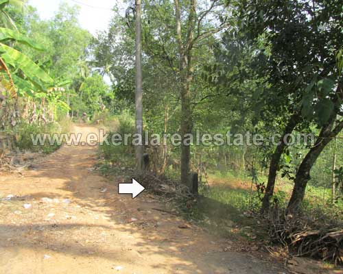 Balaramapuram Properties Above 1 Acre Land for Sale at Balaramapuram Trivandrum Kerala