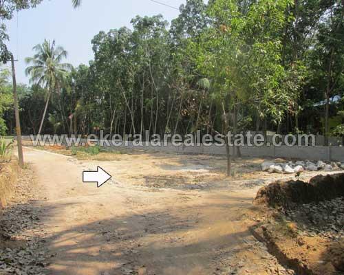 Land Sale at  Mangalapuram Trivandrum 29 Cents Land for Sale at Mangalapuram Trivandrum Kerala
