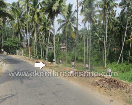 Ambalathara Properties 50 Cents Land for Sale at Ambalathara Trivandrum Kerala Real Estate