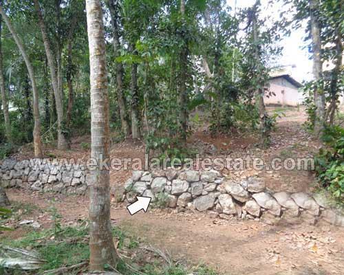 Karakulam Residential Plot for Sale at Karakulam Trivandrum Kerala Properties in Karakulam