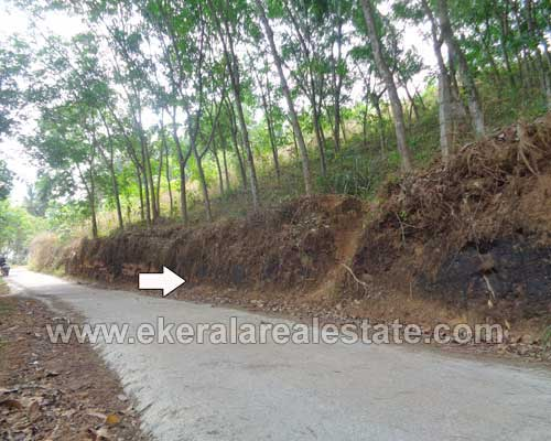 Trivandrum Properties 50 Cents Land for Sale at Pothencode Trivandrum Kerala Land Sale at Pothencode