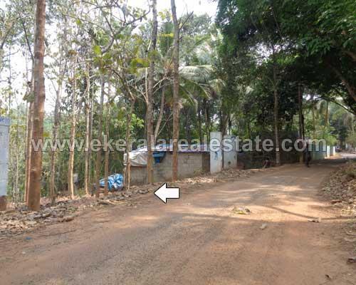 Land Sale at Malayinkeezhu 95 Cents Land for Sale at Malayinkeezhu Trivandrum Kerala