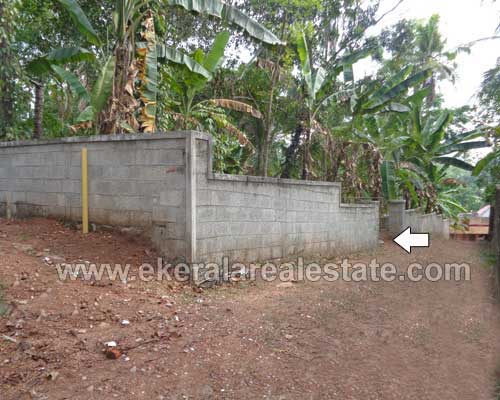 Land Sale at Nedumangad 13 Cents Residential Land for Sale at Pathamkallu Nedumangad Trivandrum Kerala