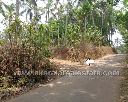 Kattakada Properties 2 Acres of Land for Sale at Kattakada Trivandrum Kerala