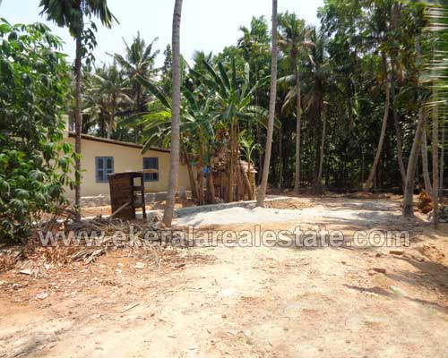 Properties near Sasthamangalam 10 Cents Residential Land for Sale at Maruthankuzhy Trivandrum Kerala