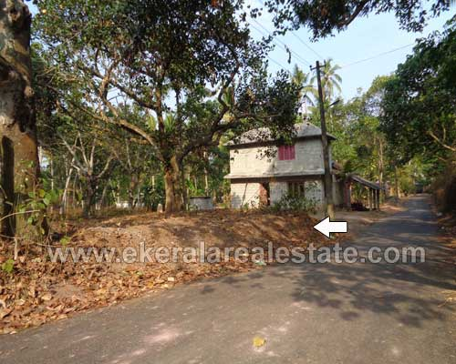 Varkala  Properties 43 Cents Residential Land for Sale at Varkala Trivandrum Kerala