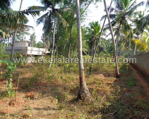 Neyyattinkara properties 20 cents land for sale at for Land for sale in kerala