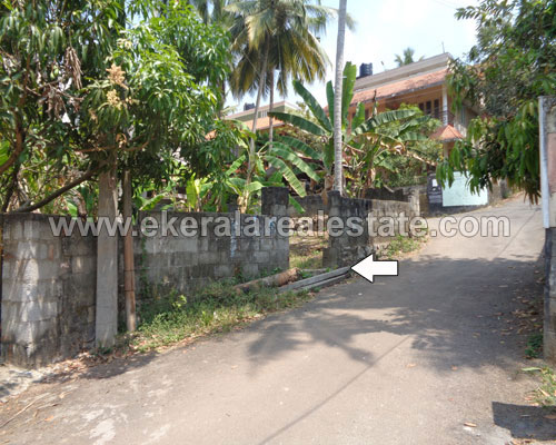 5 Cents Residential Plots for Sale at Nettayam Trivandrum Kerala Properties in Nettayam