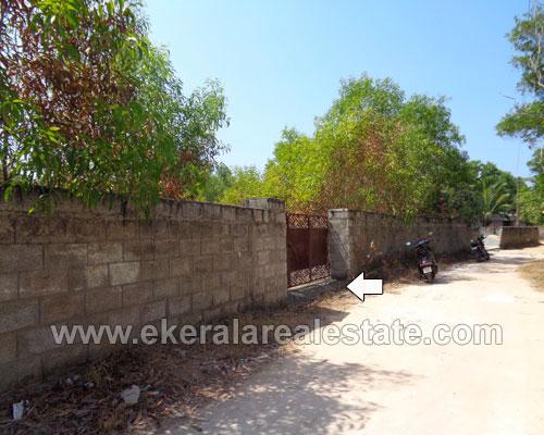 38 Cents Land for Sale at Channankara near Kaniyapuram Trivandrum Kerala Properties in Kaniyapuram